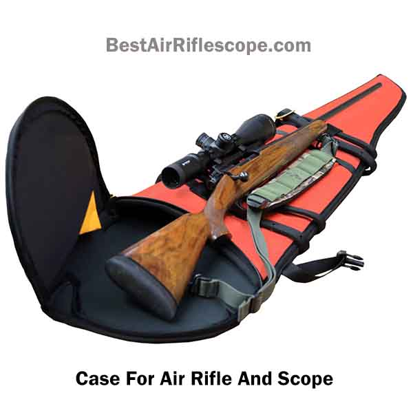 Case for air rifle and scope
